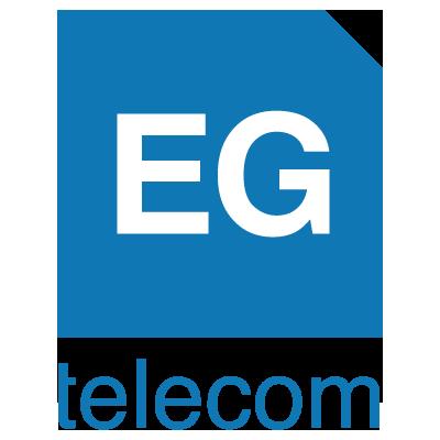 EG Telecom, formas de negocio en Internet